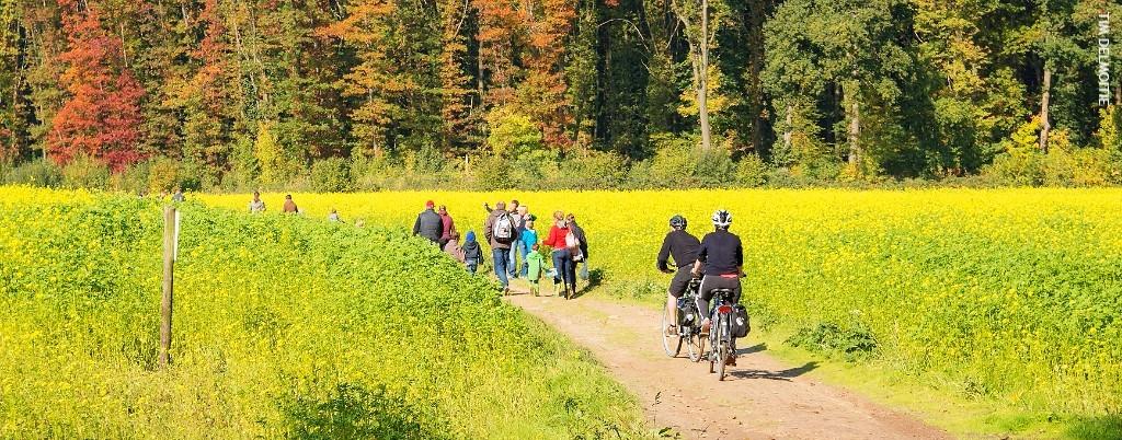 Wandelen, fietsen en genieten van lokaal lekkers!