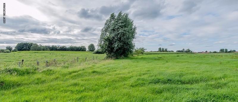 Nieuwkerken (c) Geert Meersman