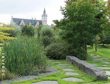 Nieuw vademecum 'Duurzaam ontwerpen van groene ruimten'