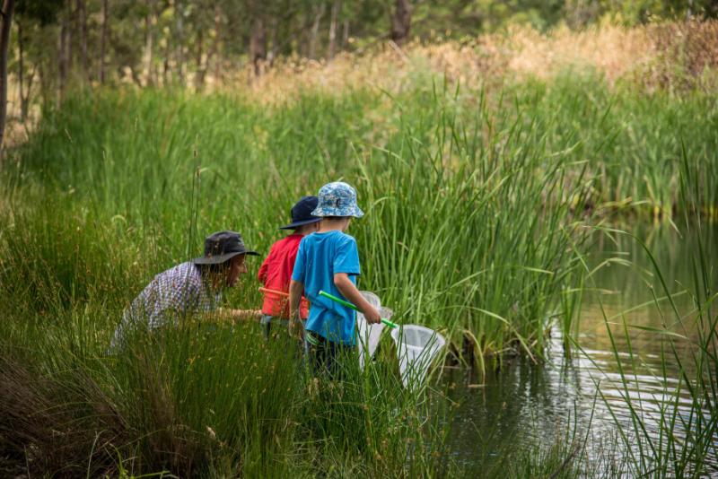 Junior Rangers Program in Plenty Gorge Park : Parks Victoria