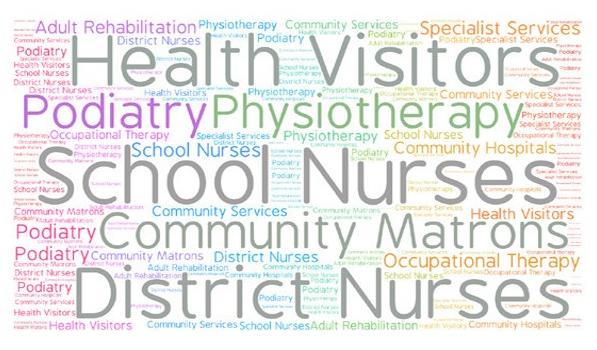Words: Health visitors, podiatry, physiotherapy, school nurses, community matrons, district nurses