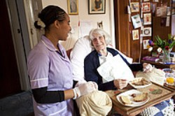 nurse chats to elderly lady eating meal