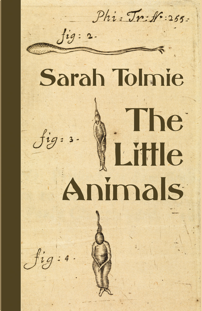 Cover image of THE LITTLE ANIMALS