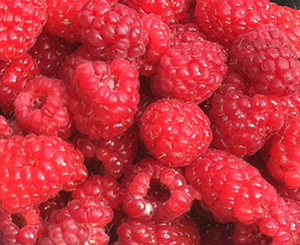 Market Raspberries
