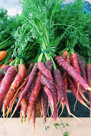 Purple Carrots from Applecrest