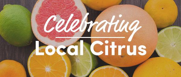 celebrating citrus
