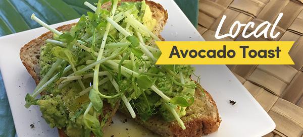 local avocado toast