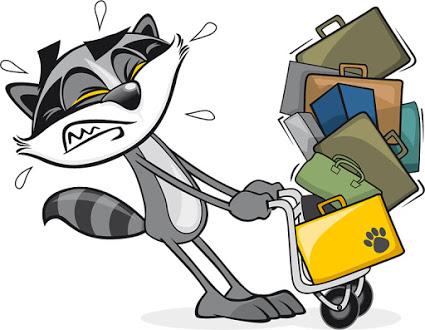 SeekTeachers - Excess Baggage