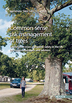 The National Tree Safety Group