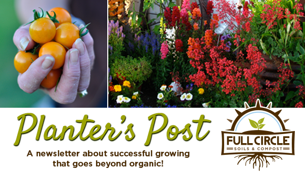 Planter's Post. A newsletter about successful growing that goes beyond organic!
