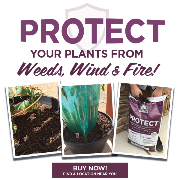 Protect your plants from Weeds, Wind & Fire! Buy Now! Find a location near you.