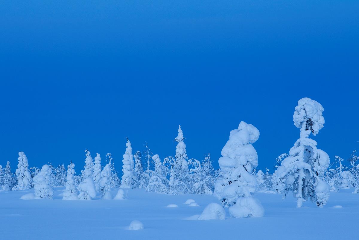 Winter Wonderland in Finland, Danny Green / www.agami.nl