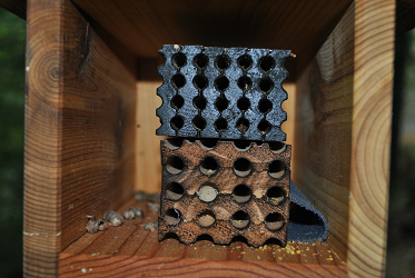 Mason & Leafcutter Bee House