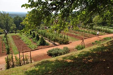 Diverse Garden