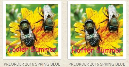 Pre-order Bees