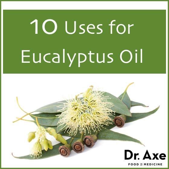 10 Uses for Eucalyptus Oil