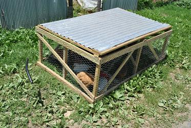 Yard Cage
