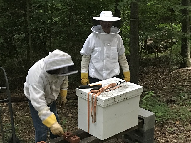 Thurman And I Preparing The Hive To Move