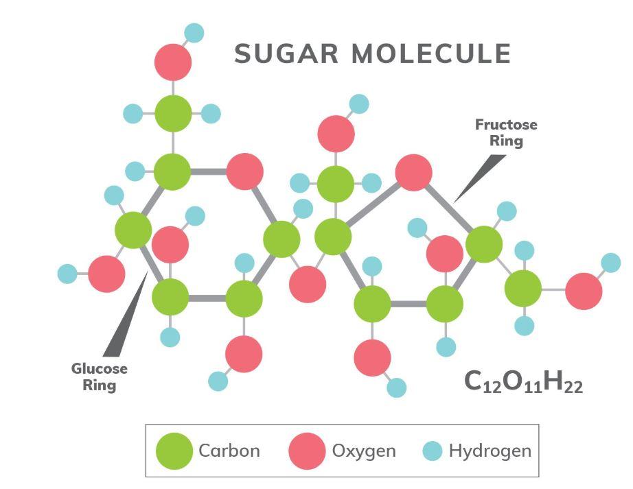 Sugar Molecule