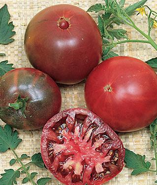 Black Krim Heriloom Tomato