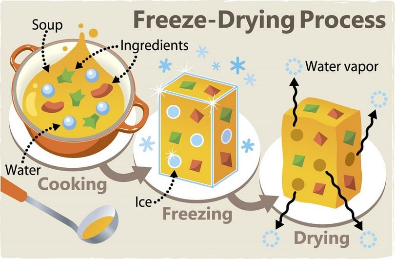 Freeze-Drying Process