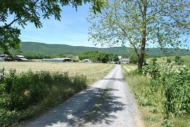 Driveway To Polyface Farm