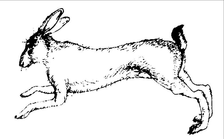 «Ο Άτακτος Λαγός» επιστρέφει: Bram Stoker και Robert Louis Stevenson από τον «Άγρα»
