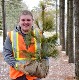 Order trees before the end of February.