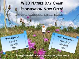 Wonder, Investigate, Learn, Discover ... Be WILD at nature camp.