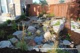 Free rain garden workshop