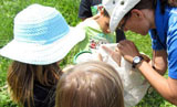 Summer Nature Day Camps at Morrison Dam Conservation Area