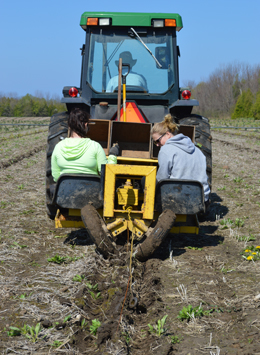 Act now to order trees through fall tree planting program.