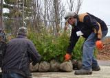 Landowners picking up trees this year through tree order form.