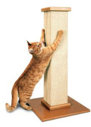 Smart Cat Ultimate Scratching Post