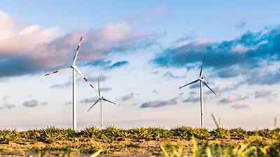 Curso online de meio ambiente e                                                            desenvolvimento                                                            sustentável