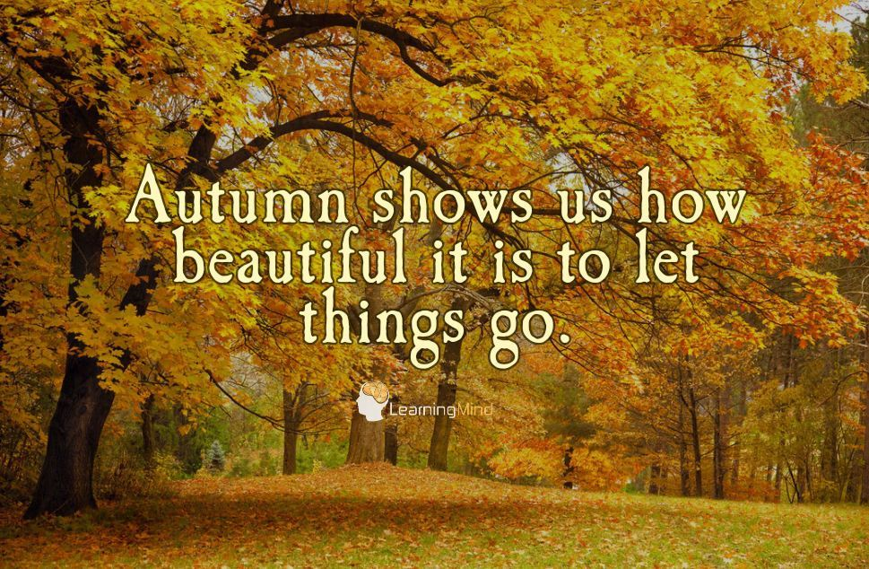 """""""Autumn shows us how beautiful it is to let things go."""""""