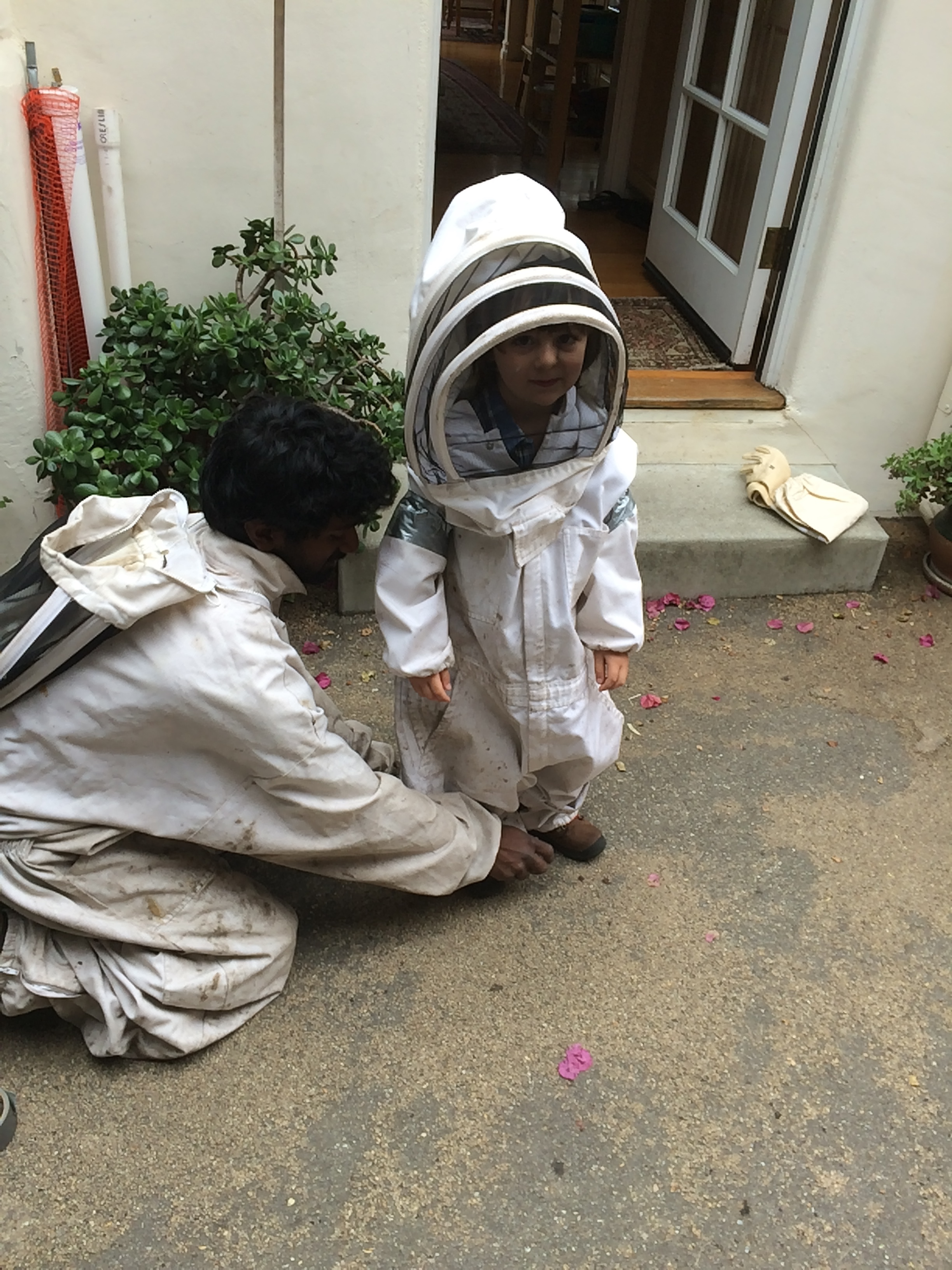 Cute kid in a bee suit