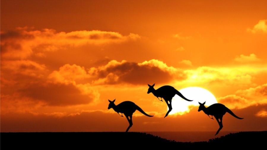 Alla Scoperta dell'Australia e delle Isole più belle dell'Oceano Pacifico:
