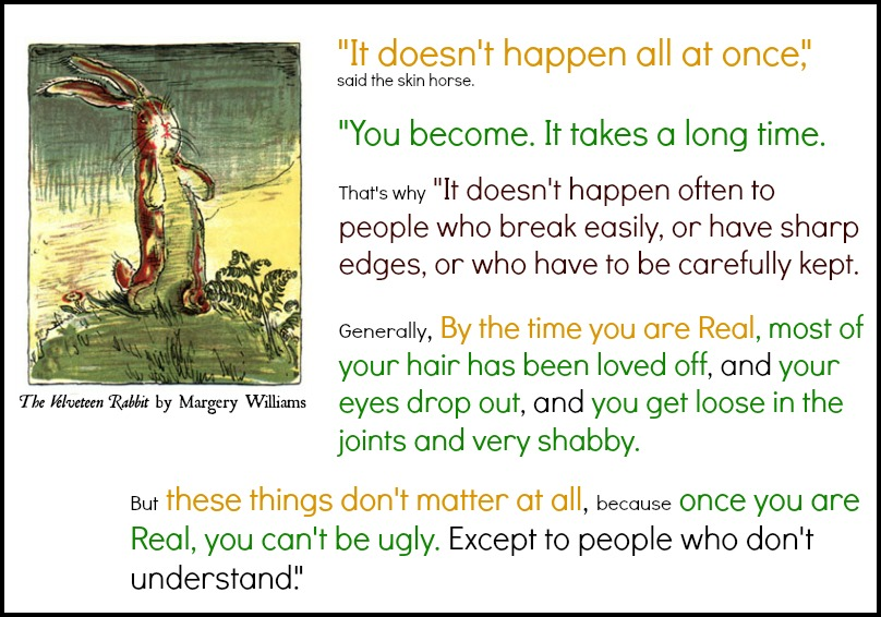 What is Real? The Velveteen Rabbit