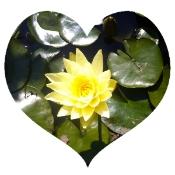 self-compassion valentine