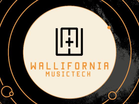 02/07 - Wallifornia Musictech Festival