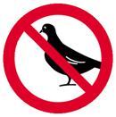 Keine Tauben mehr
