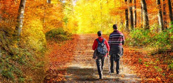Wandelen in herfstkleuren