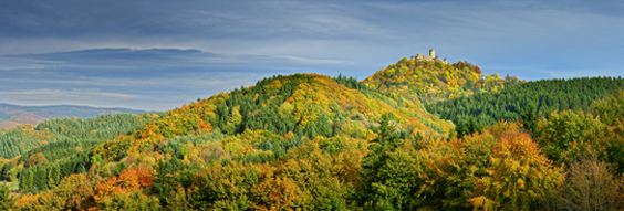 Herfst in de Eifel