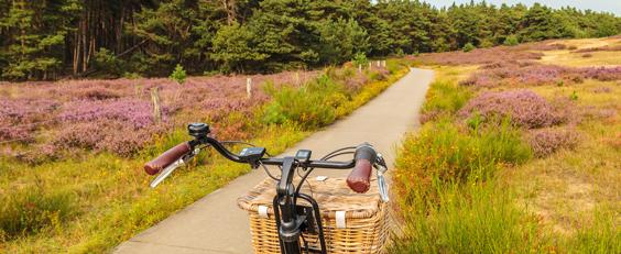 Gelderland fietsvakantie