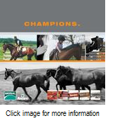 Merial Equine Products Brochure