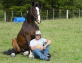Horse Sport New Zealand