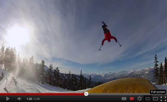 Sit Ski Flip