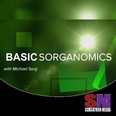 Basic Sorganomics:  Learning from Vince McMahon