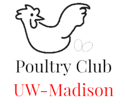 UW-Madison Poultry Club